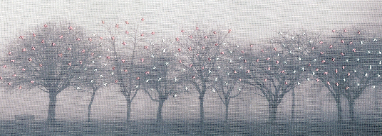 Winter_longing_blossom